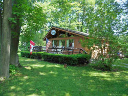 Photo of 7322 Woodland, Lexington, MI 48450 (MLS # 31351928)