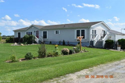 Photo of 3668 Burns Line, Croswell, MI 48422-8824 (MLS # 31359124)