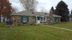 Photo of 5848 Lakeshore, Palms, MI 48465 (MLS # 31365446)