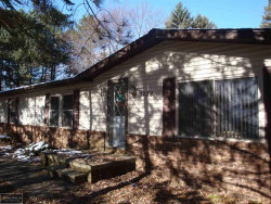Photo of 3736 Shorewood, Burtchville, MI 48059 (MLS # 31366395)