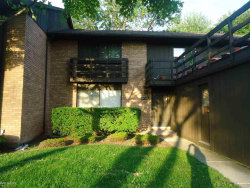 Photo of 37202 Clubhouse Dr, Unit 46, Sterling Heights, MI 48312 (MLS # 31376242)