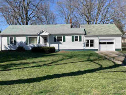 Photo of 238 College Ave, Britton, MI 49229 (MLS # 31376570)