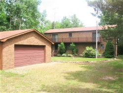 Photo of 8386 N Lakeshore, Forestville, MI 48434 (MLS # 31379302)