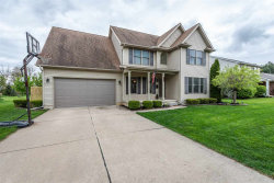 Photo of 167 Carney, Dundee, MI 48131 (MLS # 31379982)
