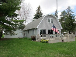 Photo of 8370 N Lakeshore Rd., Forestville, MI 48434 (MLS # 31380894)
