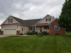 Photo of 7013 GREENBUSH LANE, Lexington, MI 48450 (MLS # 31384412)
