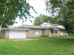 Photo of 5741 Hintz, Palms, MI 48465 (MLS # 31393896)