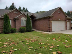 Photo of 8389 Rhode, Shelby Twp, MI 48317 (MLS # 31397942)