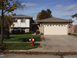 Photo of 11847 Steven Dr, Sterling Heights, MI 48312 (MLS # 31399357)