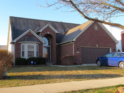 Photo of 734 FALCON DR, Dundee, MI 48131- (MLS # 40042600)