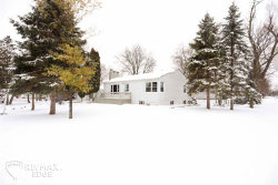 Photo of 133 W Hill St, Davison, MI 48423 (MLS # 50003794)