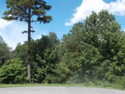 Photo of 00 COOL WATER DR, Lot 11, Hickory, NC 28601 (MLS # 9589807)
