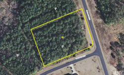 Photo of 284 GARDNER POINT DR, Lot 54, Stony Point, NC 28678 (MLS # 9593042)
