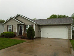 Photo of 2321 Copper Creek Road, Maryville, IL 62062 (MLS # 17023236)