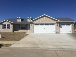 Photo of 125 Baneberry Drive, Highland, IL 62249 (MLS # 17039293)