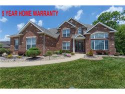 Photo of 3504 South Arbor Lake Drive, Edwardsville, IL 62025-7754 (MLS # 17040950)