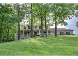 Photo of 11058 Rambling Oaks Drive, Sunset Hills, MO 63128 (MLS # 17043045)