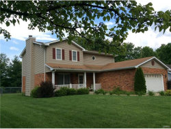 Photo of 24 Timber Meadows Place, Edwardsville, IL 62025 (MLS # 17043414)