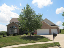 Photo of 1619 Coles Court, Edwardsville, IL 62025 (MLS # 17049241)