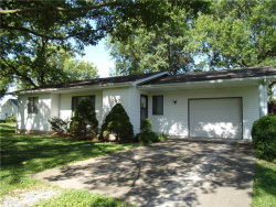 Photo of 507 Bliss Lane, Troy, IL 62294-1747 (MLS # 17049245)