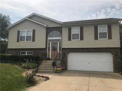Photo of 159 Pebblebrook Lane, Troy, IL 62294-2543 (MLS # 17052454)