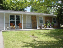 Photo of 825 Countryside, Troy, MO 63379-1601 (MLS # 17057549)