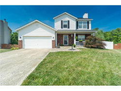 Photo of 46 Julie Drive, Glen Carbon, IL 62034 (MLS # 17058733)