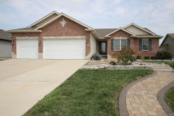 Photo of 285 Shadowbrooke, Troy, IL 62294-3631 (MLS # 17064543)