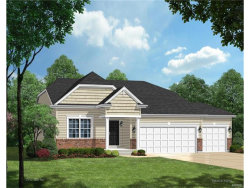 Photo of 817 Brimley Drive, Cottleville, MO 63304 (MLS # 17064565)