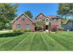 Photo of 762 Southbrook Forest Court, Weldon Spring, MO 63304-5744 (MLS # 17065461)