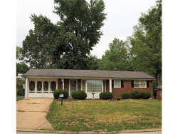 Photo of 8709 Holbrook, St Louis, MO 63123-6523 (MLS # 17065759)