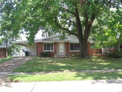 Photo of 818 Doerwood Court, Kirkwood, MO 63122-3010 (MLS # 17068149)
