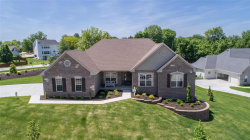 Photo of 101 Ehlmann Farms Drive, Weldon Spring, MO 63304 (MLS # 17068963)