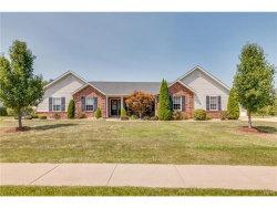 Photo of 2 Abedeen Court, Troy, MO 63379-2927 (MLS # 17069940)