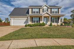 Photo of 304 Orchid, Wentzville, MO 63385-2656 (MLS # 17070340)