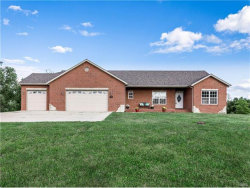 Photo of 556 Longhi, Collinsville, IL 62234-6928 (MLS # 17070513)