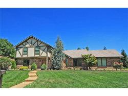 Photo of 10705 Burrow Drive, Sunset Hills, MO 63128-1523 (MLS # 17071152)
