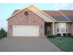 Photo of 200 River Bluff, Troy, MO 63379-2050 (MLS # 17072243)