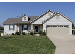 Photo of 2201 Central Park Drive, Troy, MO 63379-2593 (MLS # 17072326)