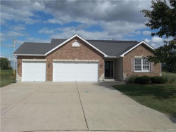 Photo of 16 Berkshire Court, Troy, MO 63379-4018 (MLS # 17072672)