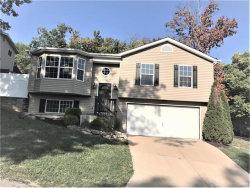 Photo of 2766 Harmony Hill Drive, Arnold, MO 63010 (MLS # 17074014)