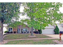 Photo of 16484 Birch Forest Drive, Wildwood, MO 63011-1825 (MLS # 17074546)