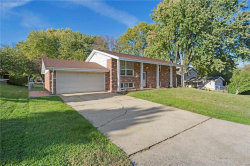 Photo of 119 Briarcliff, St Charles, MO 63301 (MLS # 17074663)