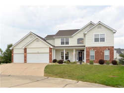 Photo of 229 Greenbriar Bluffs Drive, St Peters, MO 63376-7767 (MLS # 17074777)