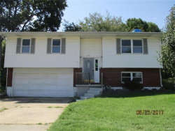 Photo of 406 Riggin Road, Troy, IL 62294-6229 (MLS # 17075200)