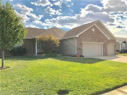 Photo of 8418 Herrick Park Drive, Troy, IL 62294-1160 (MLS # 17077820)