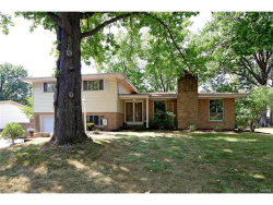 Photo of 8645 Otto Westway, Sunset Hills, MO 63127-1428 (MLS # 17078085)