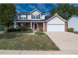 Photo of 105 Sugar Oak Court, Edwardsville, IL 62025-7720 (MLS # 17080813)