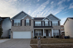 Photo of 409 Coventry Trail Lane, Maryland Heights, MO 63043-5135 (MLS # 17086831)