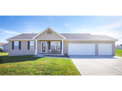 Photo of 902 Appalachian Drive, Wentzville, MO 63385-3879 (MLS # 17088356)